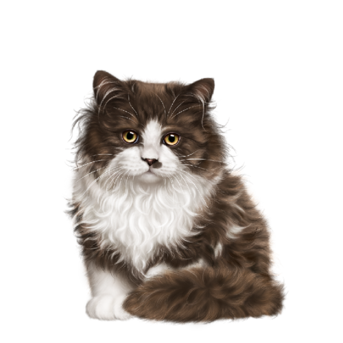 Les chats - Page 37 0_b9fcd_4f135cb9_L