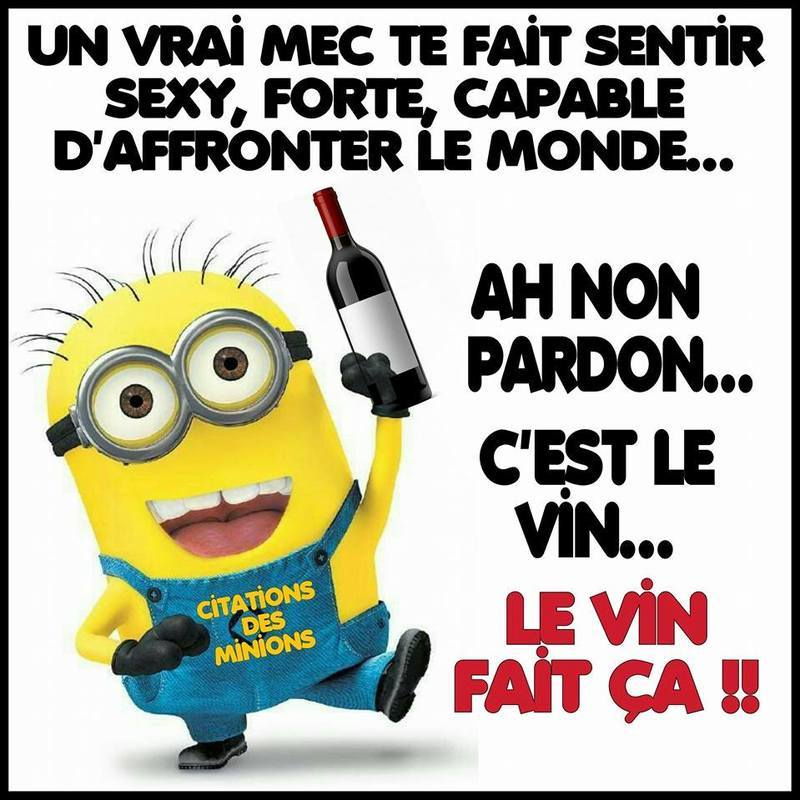 Citation pt minions - Image des mignon ...