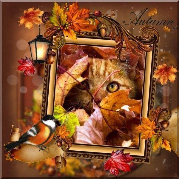 automne création